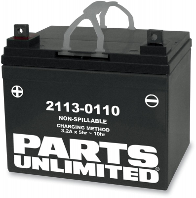 Parts Unlimited - Parts Unlimited AGM Maintenance-Free Battery RTX12-BS